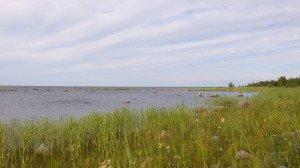 Sur le bord de la mer baltique où nous bivouaquons